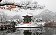 Южная Корея тур в Сеул новый год