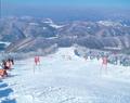 """Фестиваль """"Ru-Ski"""" в Южной Корее"""