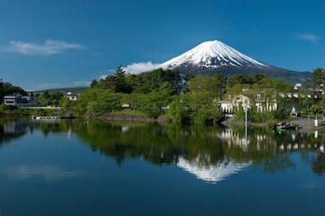 """Тур в Японию """"Цветение сакуры"""". Авиа"""
