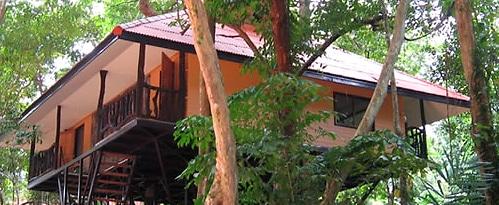 В тайских джунглях открылся эко-отель на кронах деревьев